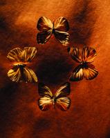 Kelebekler - ART-224