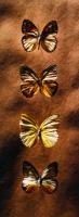 Kelebekler - ART-386