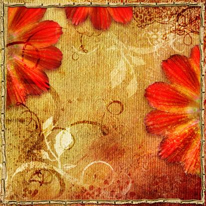 Kırmızı Çiçekler 0
