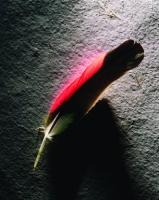 Kuş Tüyü - ART-232