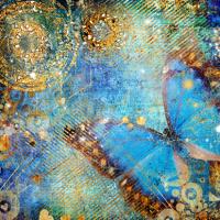 Mavi Kelebek - IMB-C-398