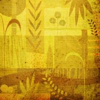 Mevsim Dönümü - IMB-261
