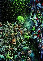 Soyut Kompozisyon - ART-041