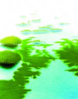 Soyut Kompozisyon - ART-042