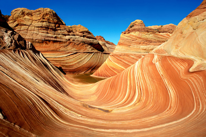 The Wave at Coyote Buttes 0