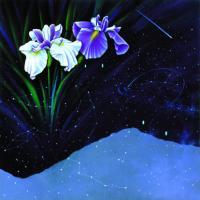 Yıldızlar ve Çiçekler - ART-051