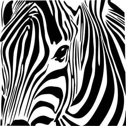 Zebra İllüstrasyon resim