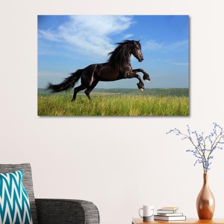 Koşan Arap Atı resim2