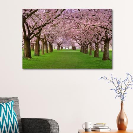 Pembe Çiçekli Ağaçlar resim2
