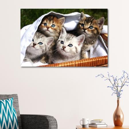 Sepetteki Kedi Yavruları resim2