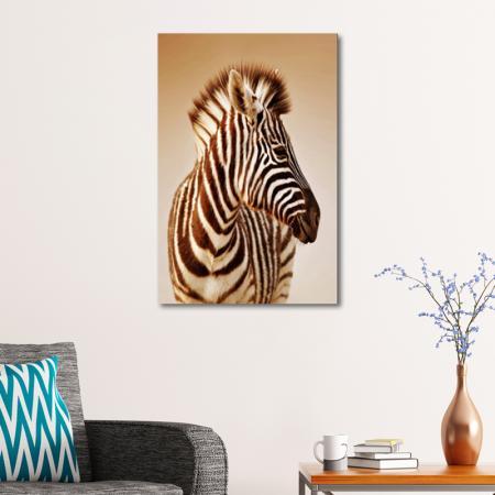 Zebra resim2