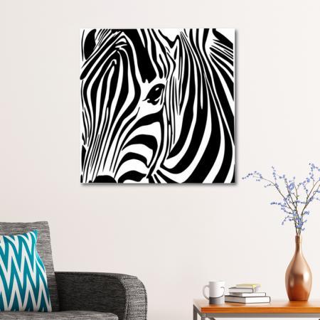 Zebra İllüstrasyon resim2