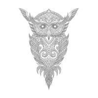 Baykuş Desenli Mandala Tablosu - CM-013