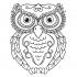 Baykuş desenli Mandala Tablosu k0