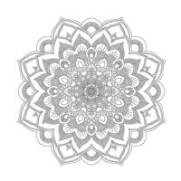Çiçek Desenli Mandala Tablosu - CM-001