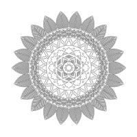 Çiçek Desenli Mandala Tablosu - CM-053