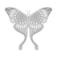 Kelebek Desenli Boyanabilir Tablo - CM-008
