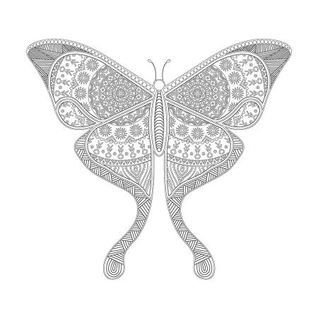 Kelebek Desenli Boyanabilir Tablo 0
