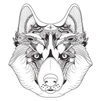Kurt Desenli Mandala Tablosu - CM-034