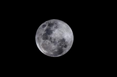 Ryuk Ayı 0