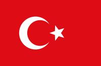 Türk Bayrağı Tablosu - TB-C-994