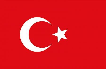 Türk Bayrağı Tablosu resim