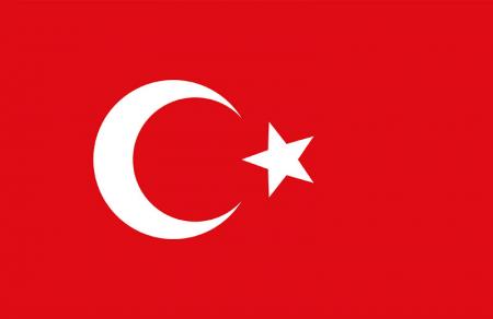 Türk Bayrağı Tablosu 0