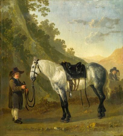 A Boy Holding a Grey Horse resim