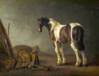 A Horse With a Saddle Beside It - UR-C-004