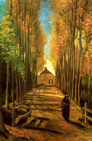 Avenue Of Poplars In Autumn resim