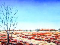 Avusturalya Çölü - DM-C-066