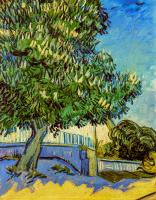 Chestnut Tree in Blossom - UR-C-197