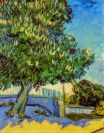 Chestnut Tree in Blossom resim