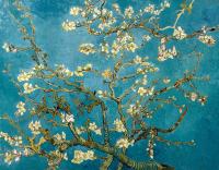 Çiçek Açan Badem Ağacı - Almond Blossoms - UR-C-199