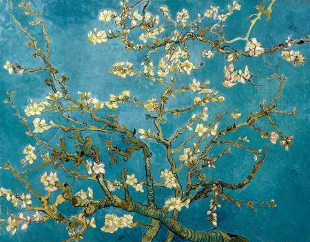 Çiçek Açan Badem Ağacı - Almond Blossoms resim