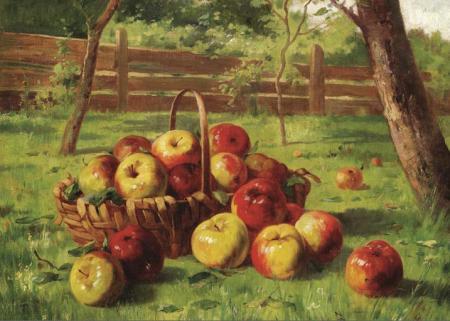 Elma Hasadı resim