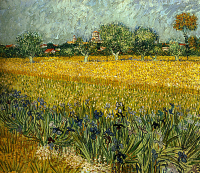 Field with flowers near Arles  - UR-C-143