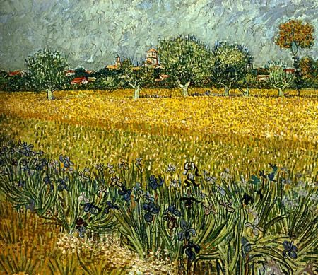 Field with flowers near Arles  resim