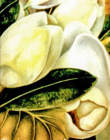 Flower Paintings resim