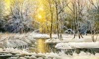 Karlı Orman ve Günbatımı - DM-C-166