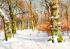 Karlı ve Güneşli Kış Manzarası k0
