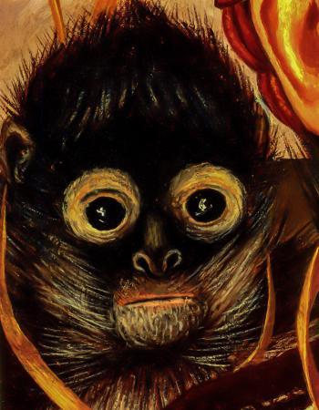 Monkey resim