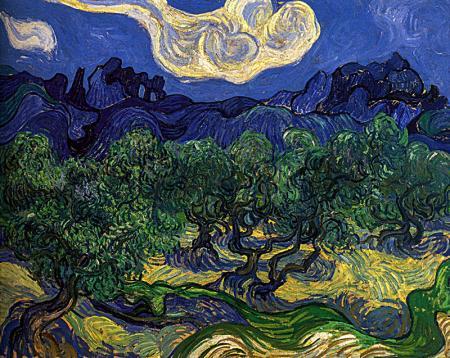 Olive Trees resim