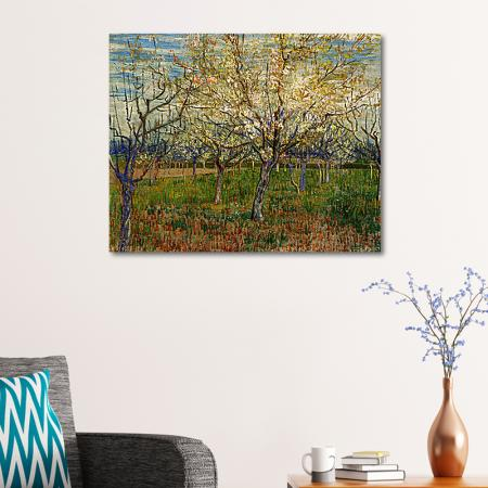 Orchard With Blossoming Apricot Trees resim2