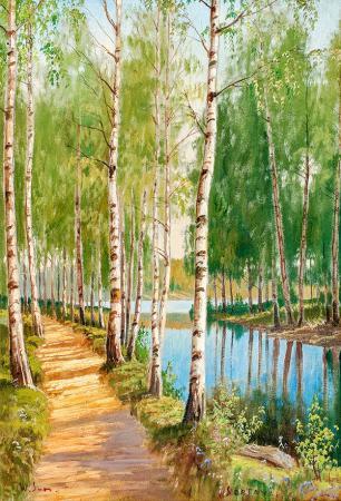 Orman ve Göl resim
