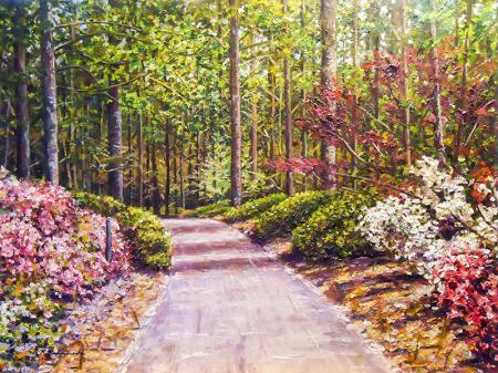 Orman Yolu resim