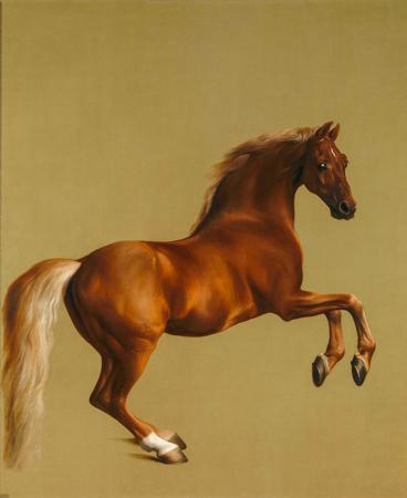 Şahlanan At resim