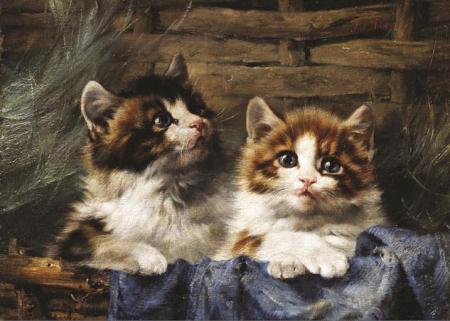 Sepetteki Kediler resim