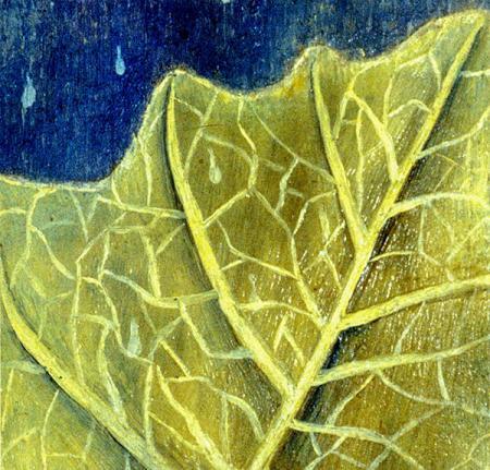 The Leaf resim