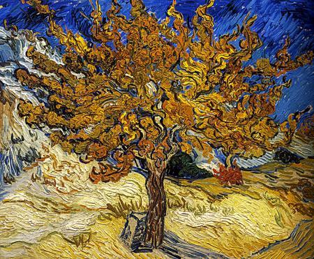 The Mulberry Tree resim